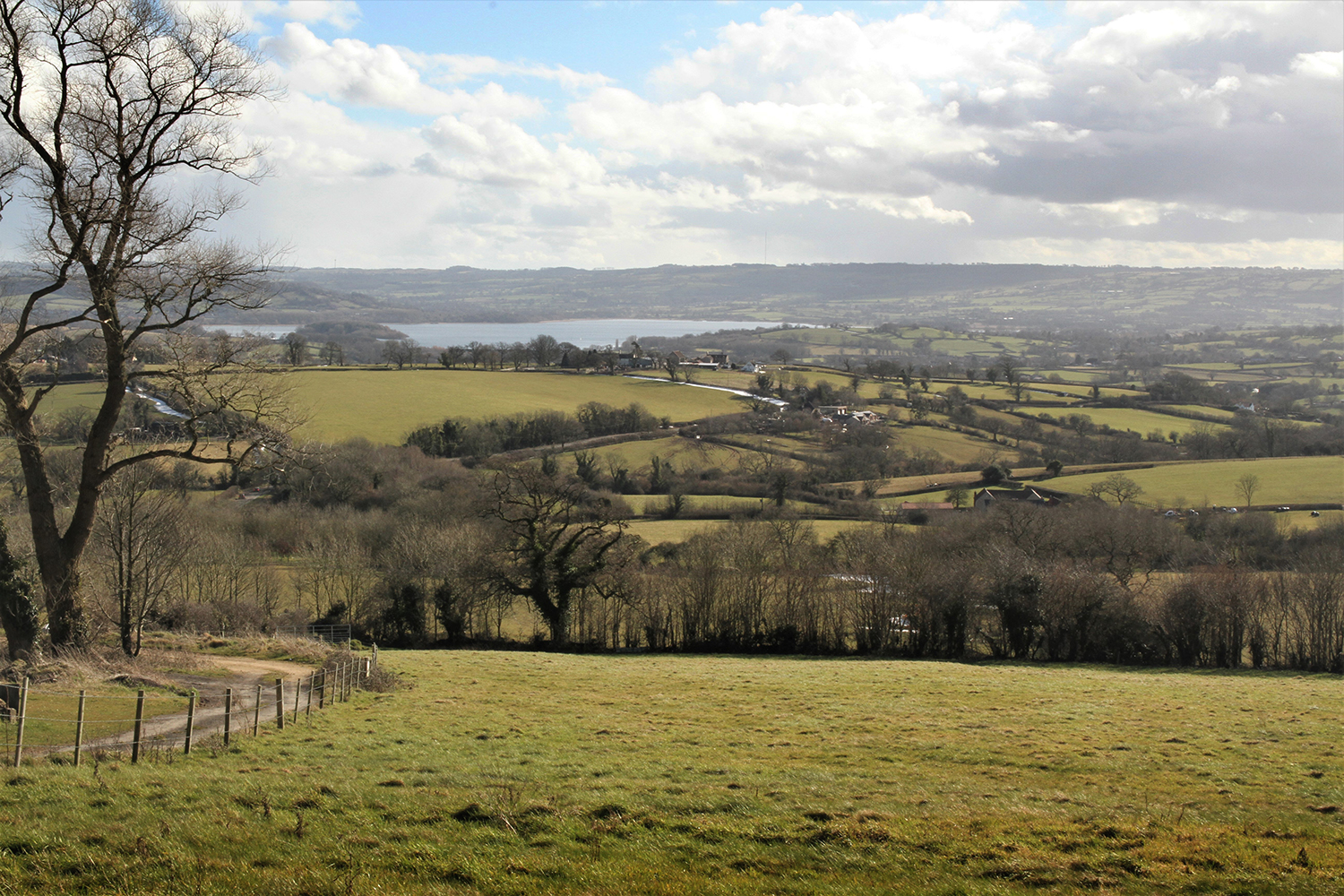 Image of Chew Valley Lake near Bristol