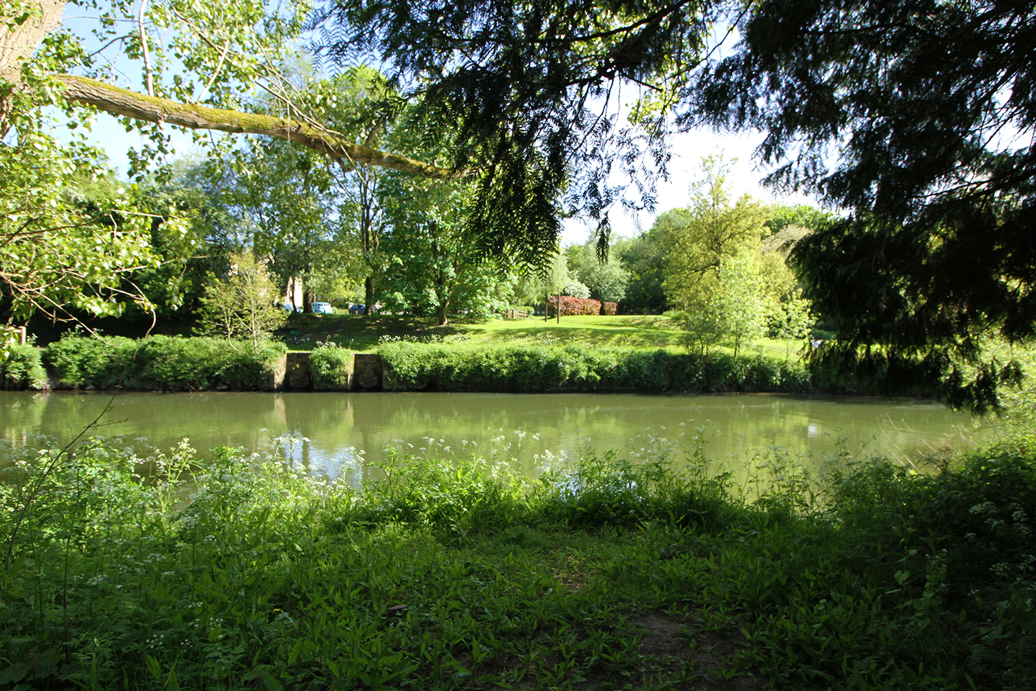 image of the River Avon